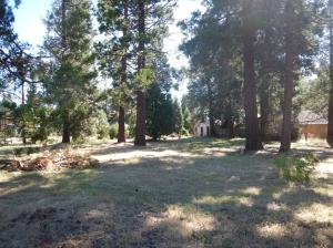 HWY 299E, Burney, CA 96013