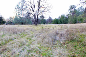 5.42 Acres Bear Valley Trail, Redding, CA 96003