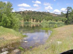 1864 acres Highway 36E, Paynes Creek, CA 96075