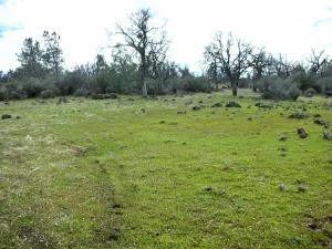 480 acres Oasis Springs Ranch Road, Paynes Creek, CA 96075