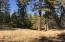 14824 Fern Rd, Whitmore, CA 96096