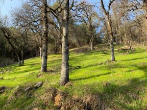 0 Bear Mountain Rd, REDDING, CA 96003
