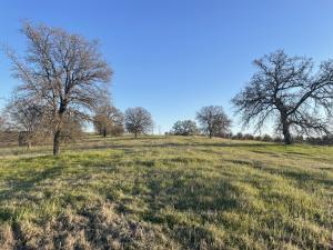 Lot 55 Arlington Park Place, Cottonwood, CA 96022