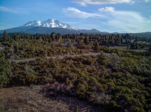 Twin View CT Lot 10, Mt Shasta, CA 96067