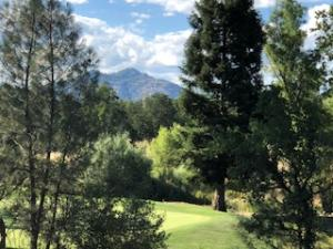 Are you looking for a lot to build your dream home on w/views??
