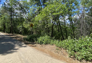 2 recreation lots Forest Road, Lakehead, CA 96051