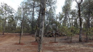 Lot 2 Silver King Road, Redding, CA 96001
