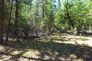 50.5 +- Ac Smiling Ranch Rd, Whitmore, CA 96096