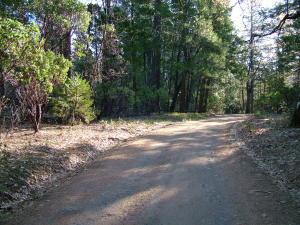 Johnson Ranch Rd, Oak Run, CA 96069