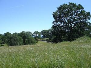 Lot 77 River Downs Way, Cottonwood, CA 96022
