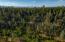 Ash Creek, Shingletown, ca 96007