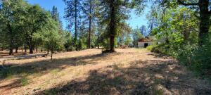 Oak Run to Fern Rd., Oak Run, CA 96069