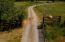 Long beautiful driveway