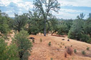 Oak Knolls, Bella Vista, CA 96008