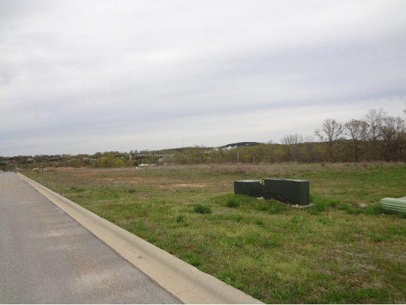 Lot 19 Coon Creek Hollister, MO 65672