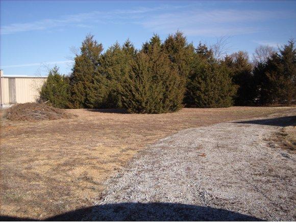 Lot 12 Bonanza Drive Kimberling City, MO 65686