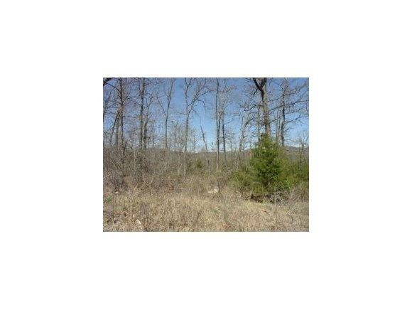 Lot 20 Campground Road Merriam Woods, MO 65740