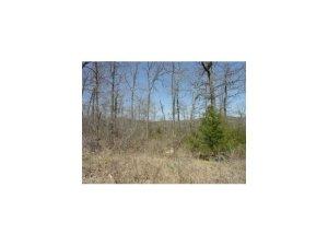Lot 20 Campground Road, Merriam Woods, MO 65740