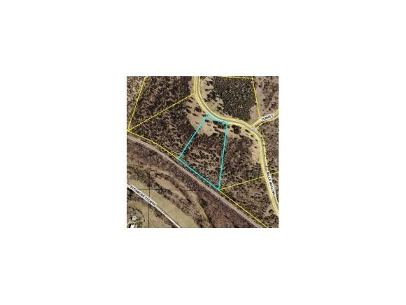 Lot 39 Mills Hollow Road Branson, MO 65616