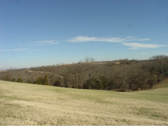Lot 62 Eagle Crest Drive Hollister, MO 65672