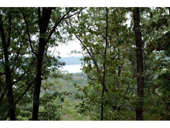 Lot 9 Plateau Lane Kimberling City, MO 65686