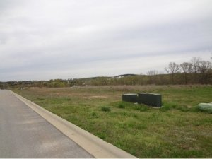 Lot 20 Coon Creek