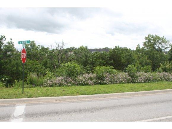 376 Birch Street Hollister, MO 65672