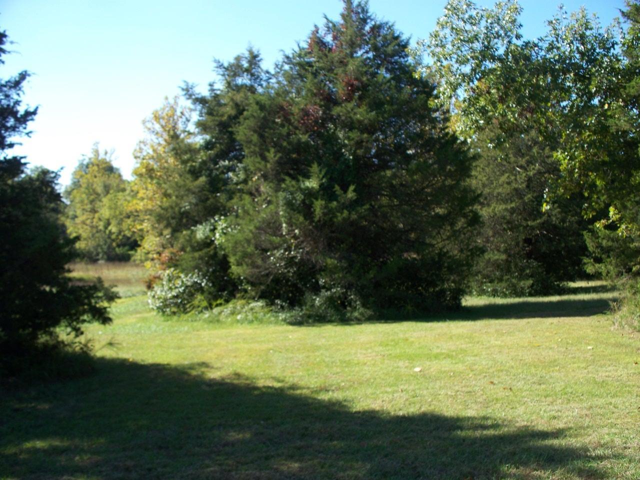 Lot 116 Seven Pines Drive Saddlebrooke, MO 65630