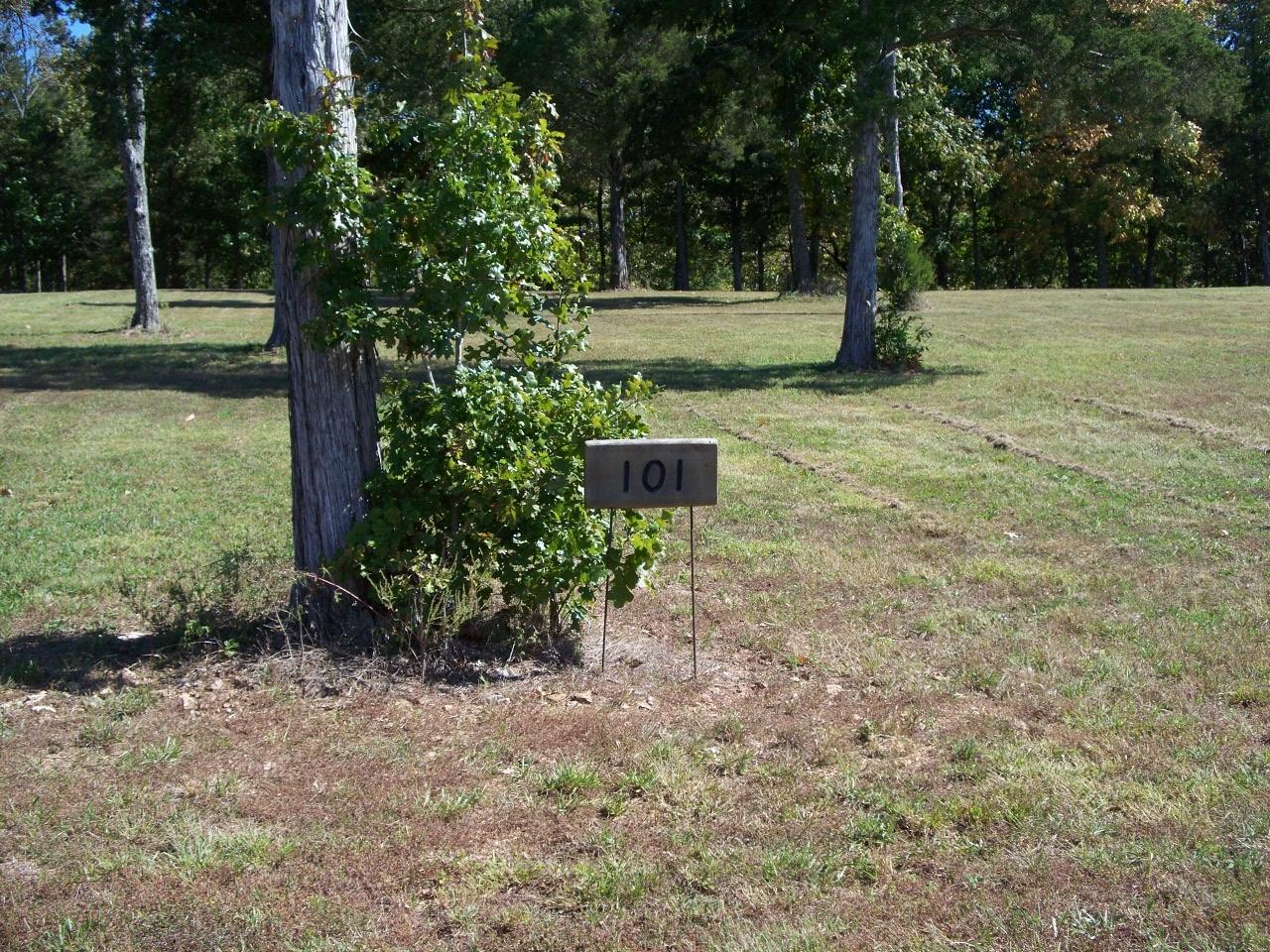 Lot 101 Seven Pines Drive Saddlebrooke, MO 65630