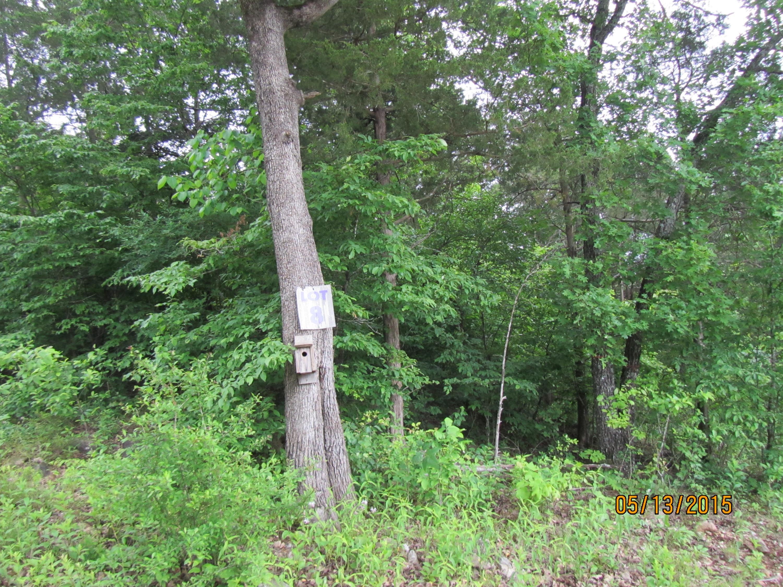 295 Shore Acre Dr. Drive Powersite, MO 65731
