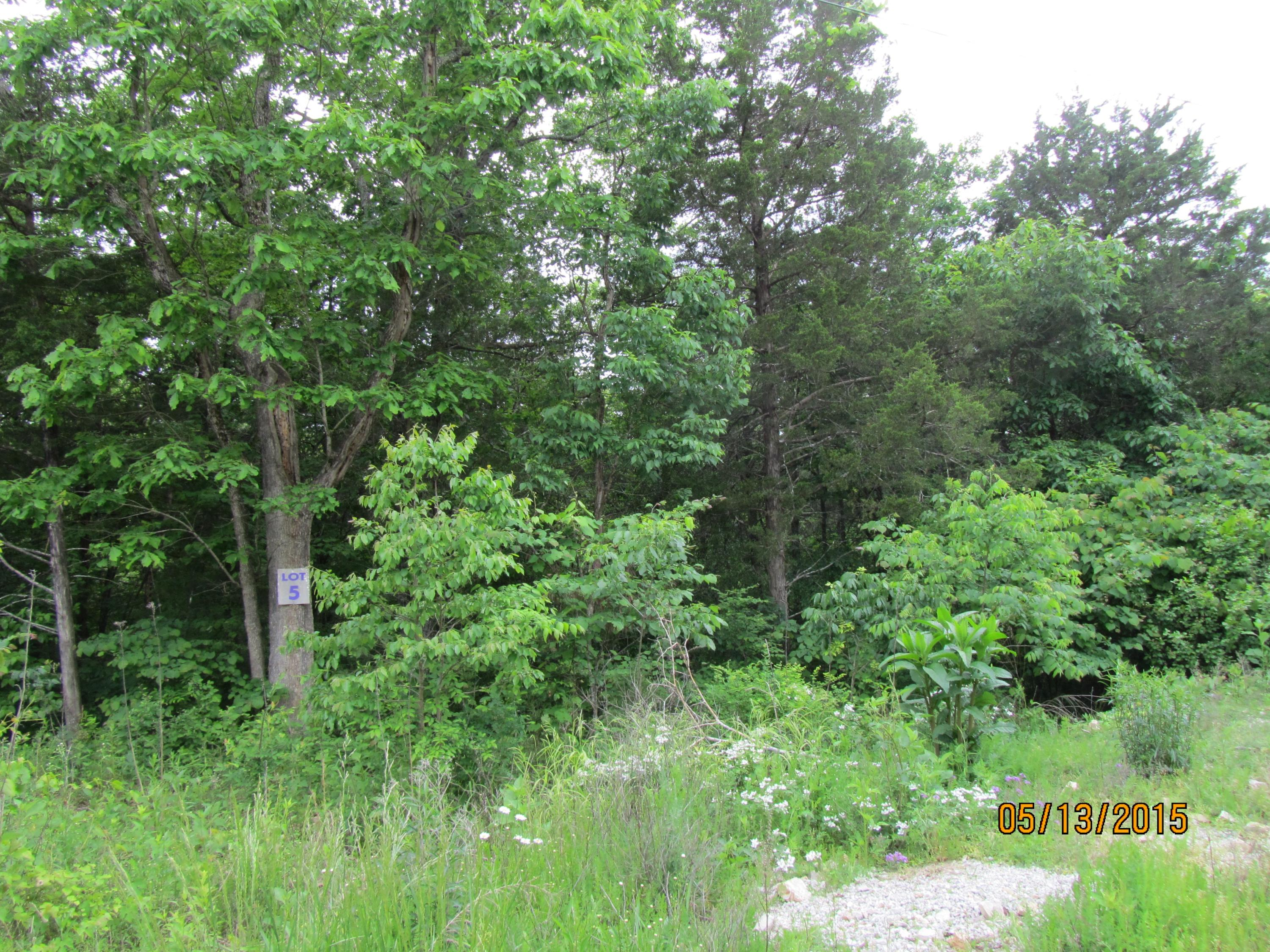 397 Shore Acres Dr. Drive Powersite, MO 65731