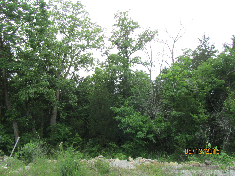397 Shore Acres Dr. Drive Powersite, MO 65731