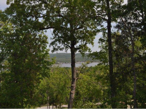 Lot 19 Whitefish Bay, Lampe, Missouri 65681