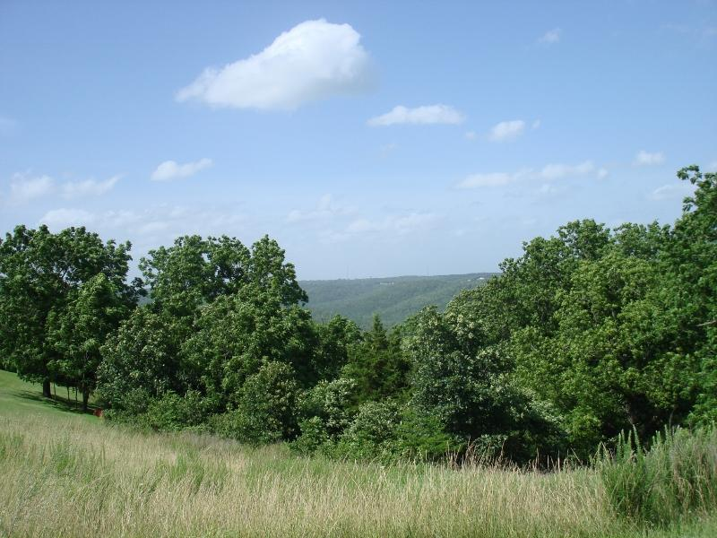 Tbd Whitetail Crossing Lots Walnut Shade, MO 65771