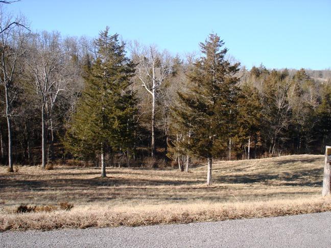 109 Appaloosa Trail, Saddlebrooke, Missouri 65630