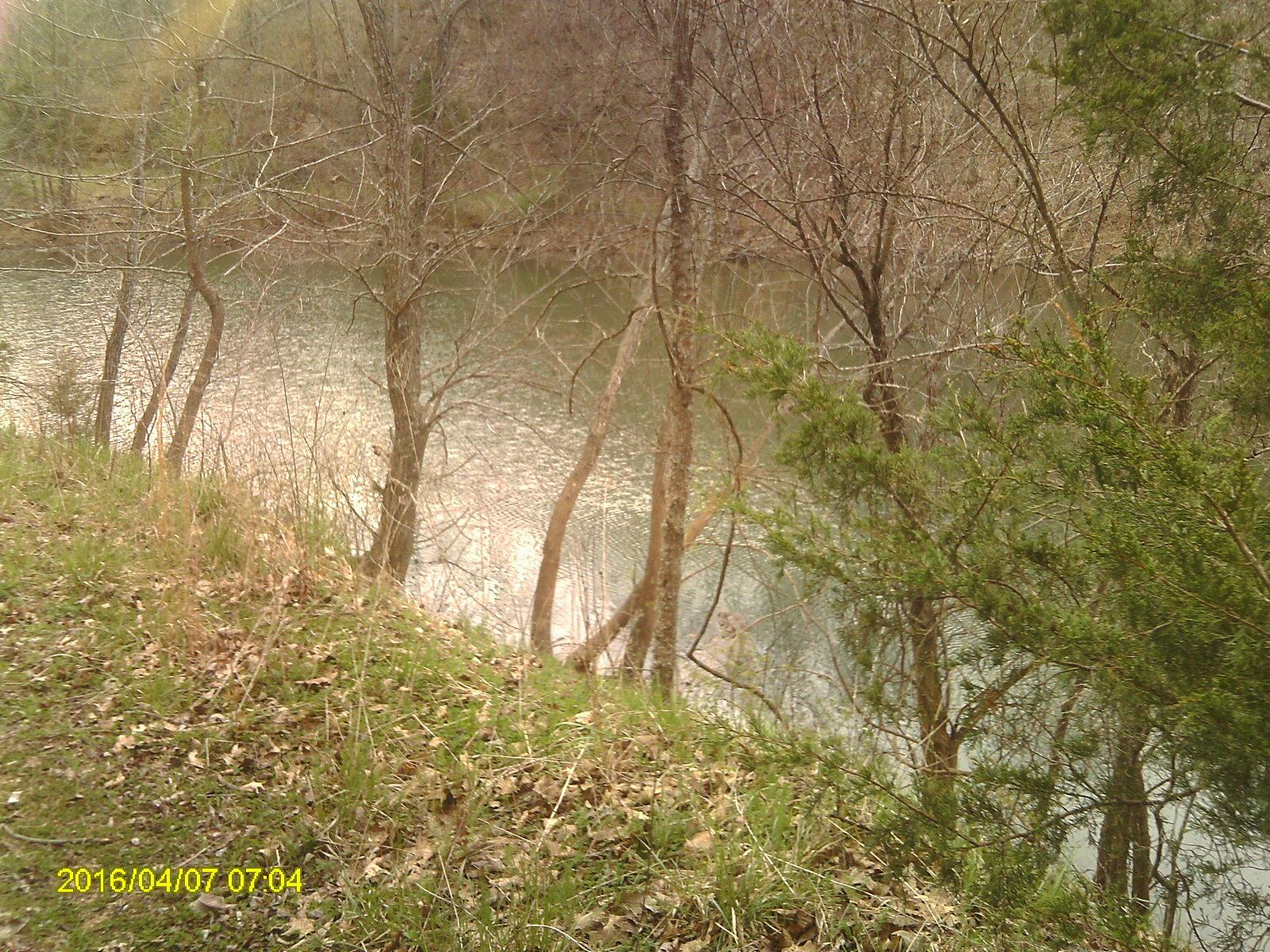 1207 Sassafras Road Spokane, MO 65754