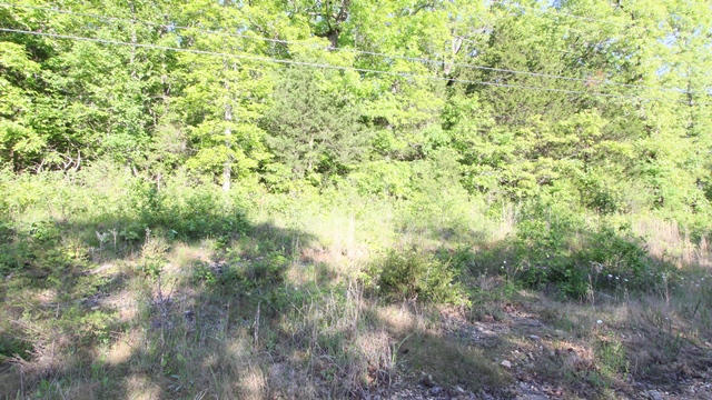 Tbd Lake Hill Road Merriam Woods, MO 65740