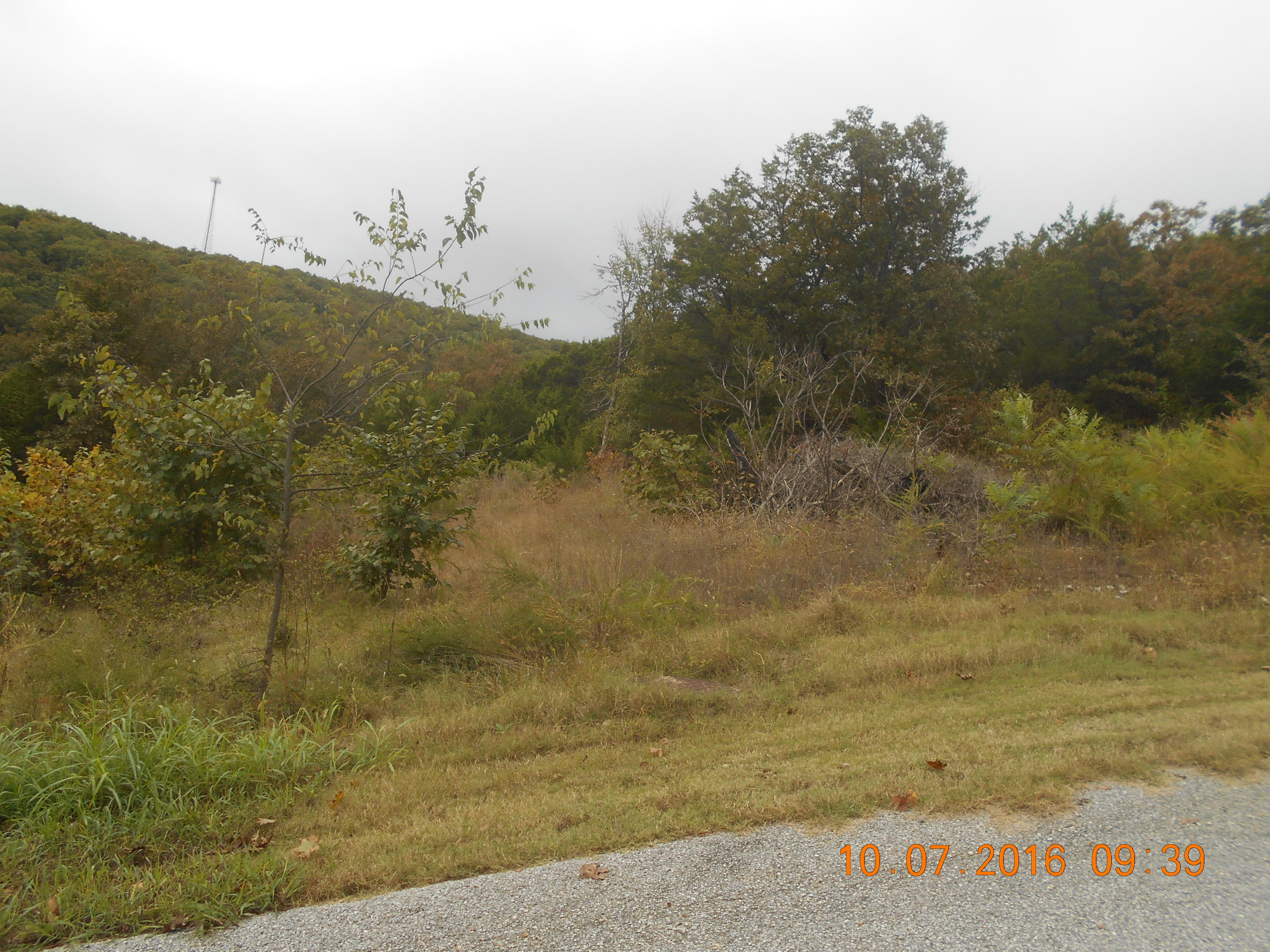 Lot 7 Pine Woods Village Drive Hollister, MO 65672