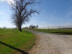 10986 Lone Pine Road