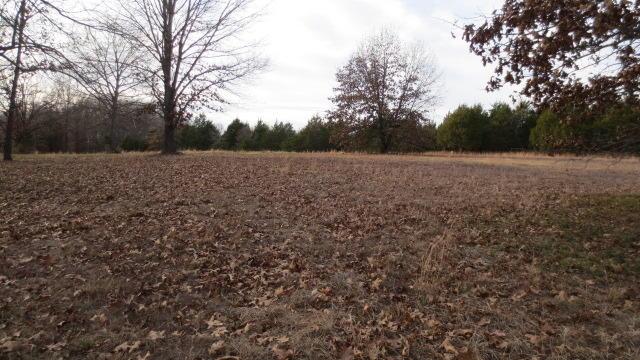 Lot B Woodfield Drive Highlandville, MO 65669