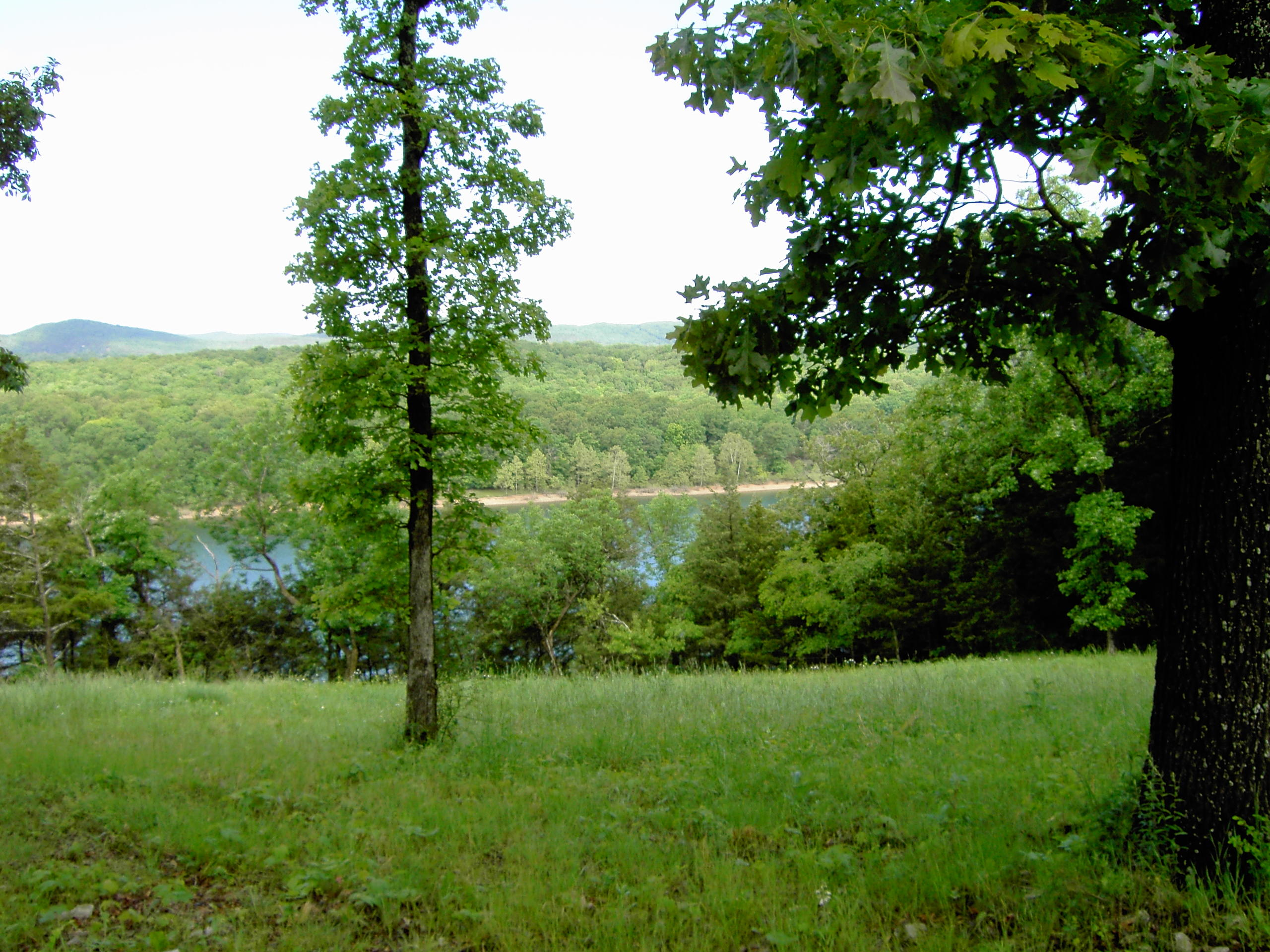 Lot 5 Sunset Lane Golden, MO 65658