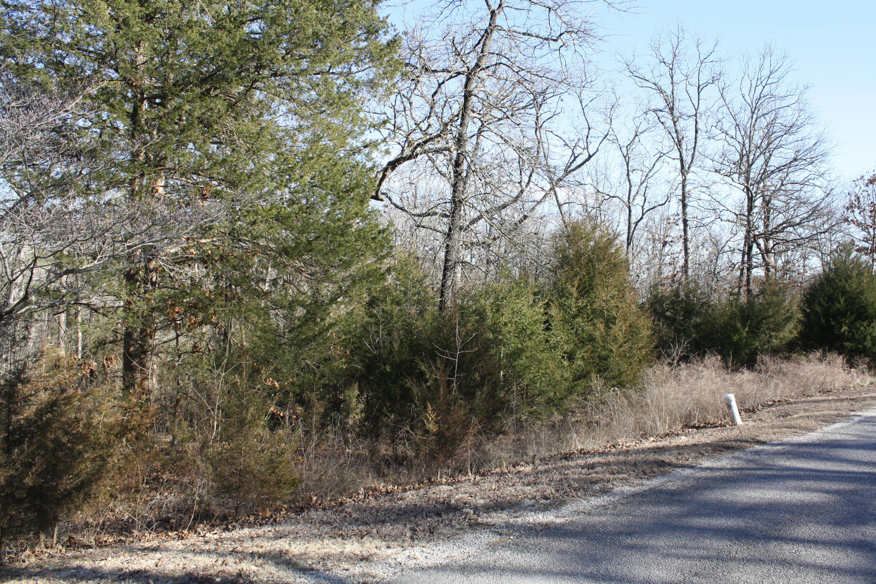 Lot 27 Edgewater Estates Kimberling City, MO 65686