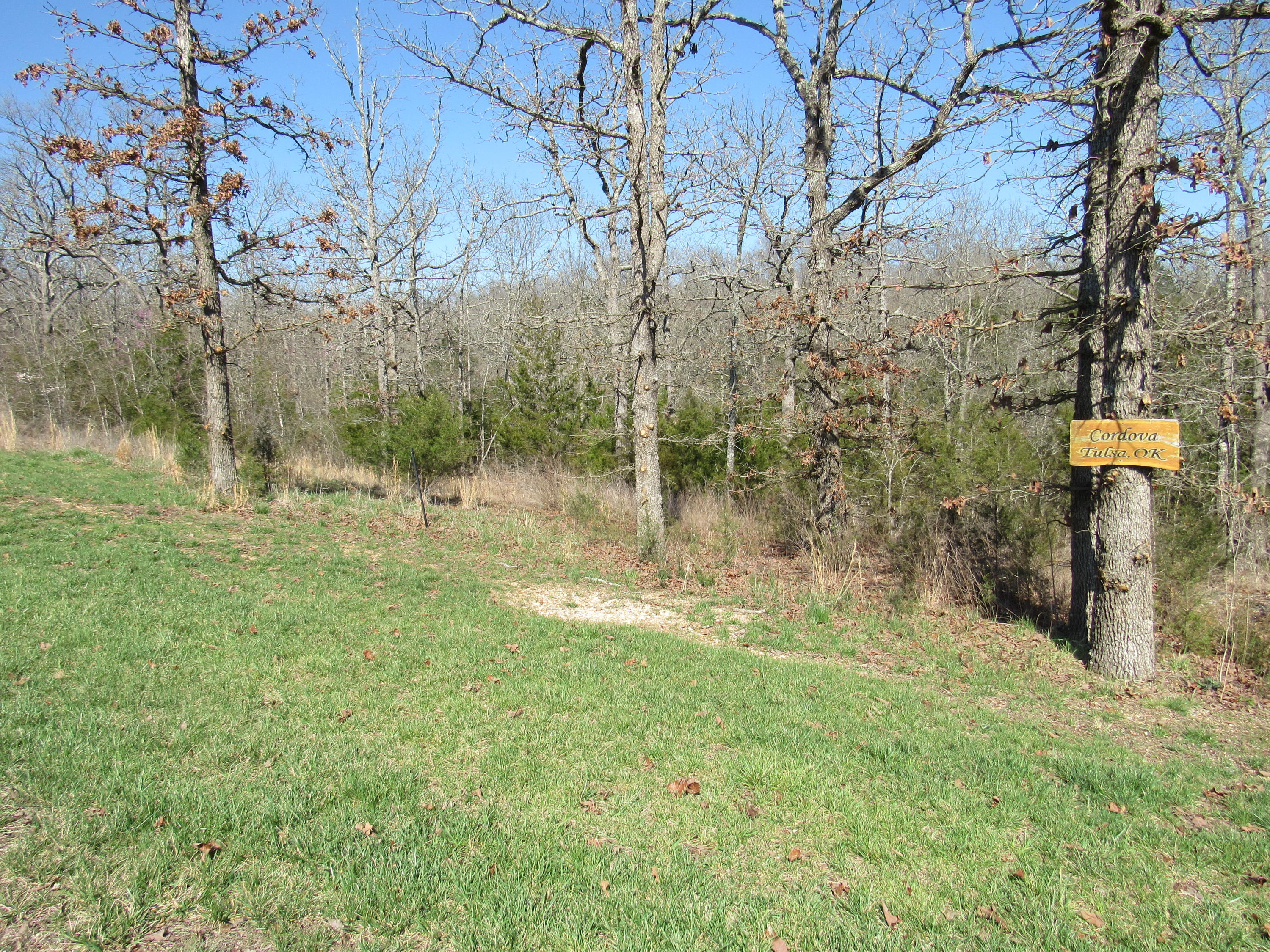 Lot 32 Forest Lake Drive Branson West, MO 65737