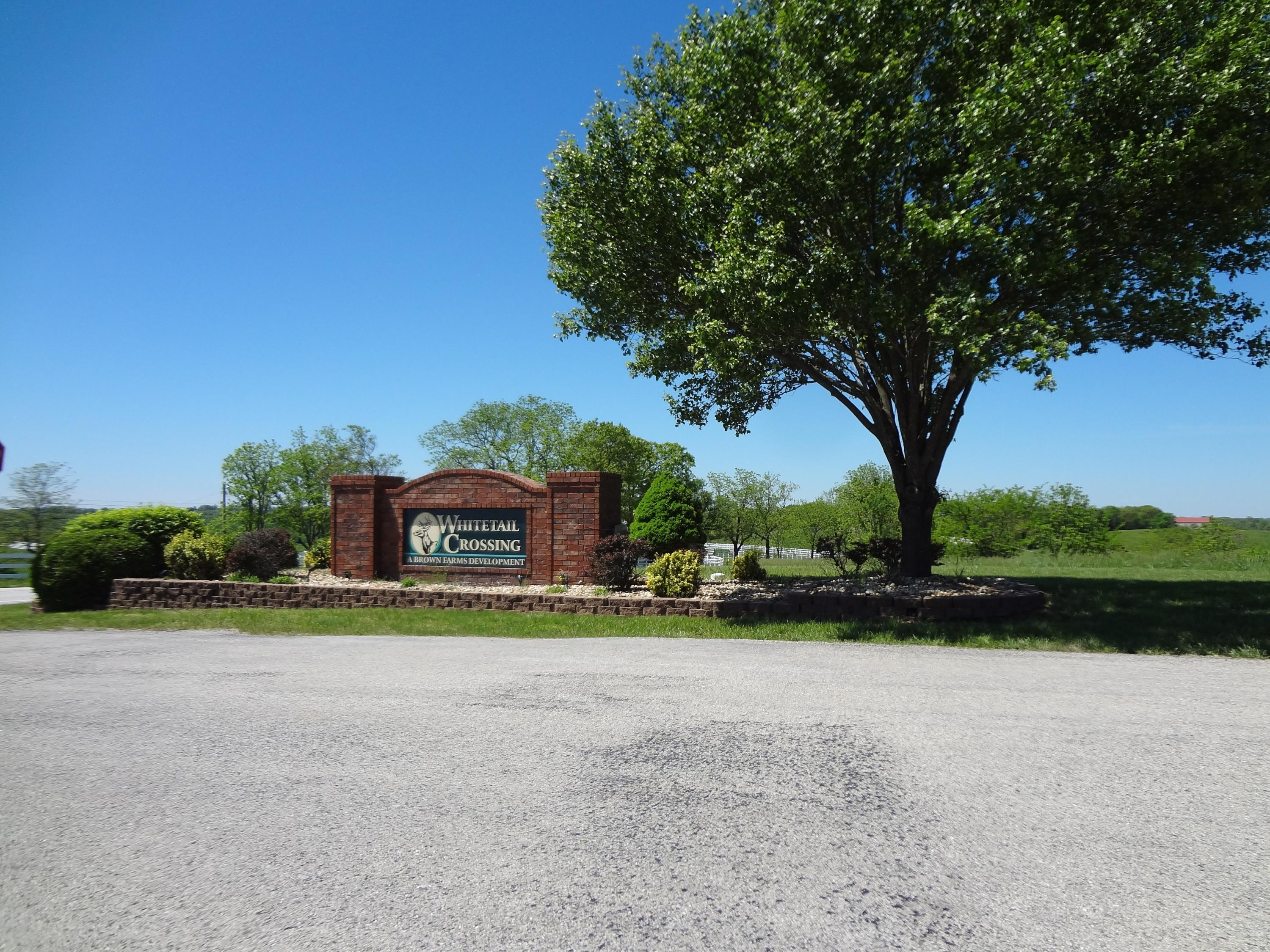 Lot 36 Whitetail Drive Walnut Shade, MO 65771