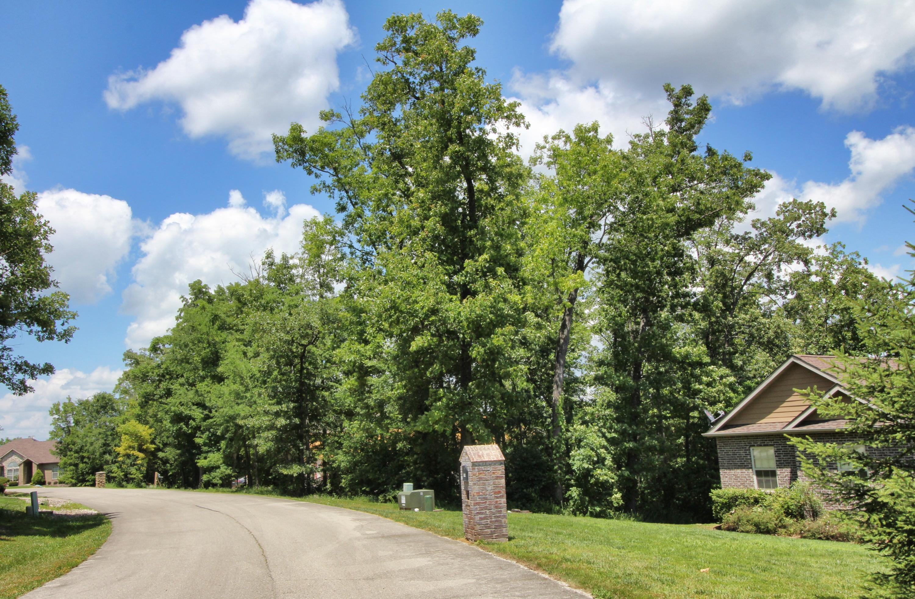Lot 37 Crossing Drive Branson West, MO 65737