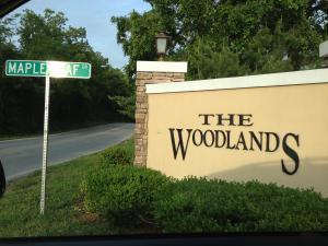 310 South Woodland Drive, 1b
