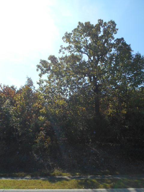 165 Forest Oak Dr. Hollister, MO 65672