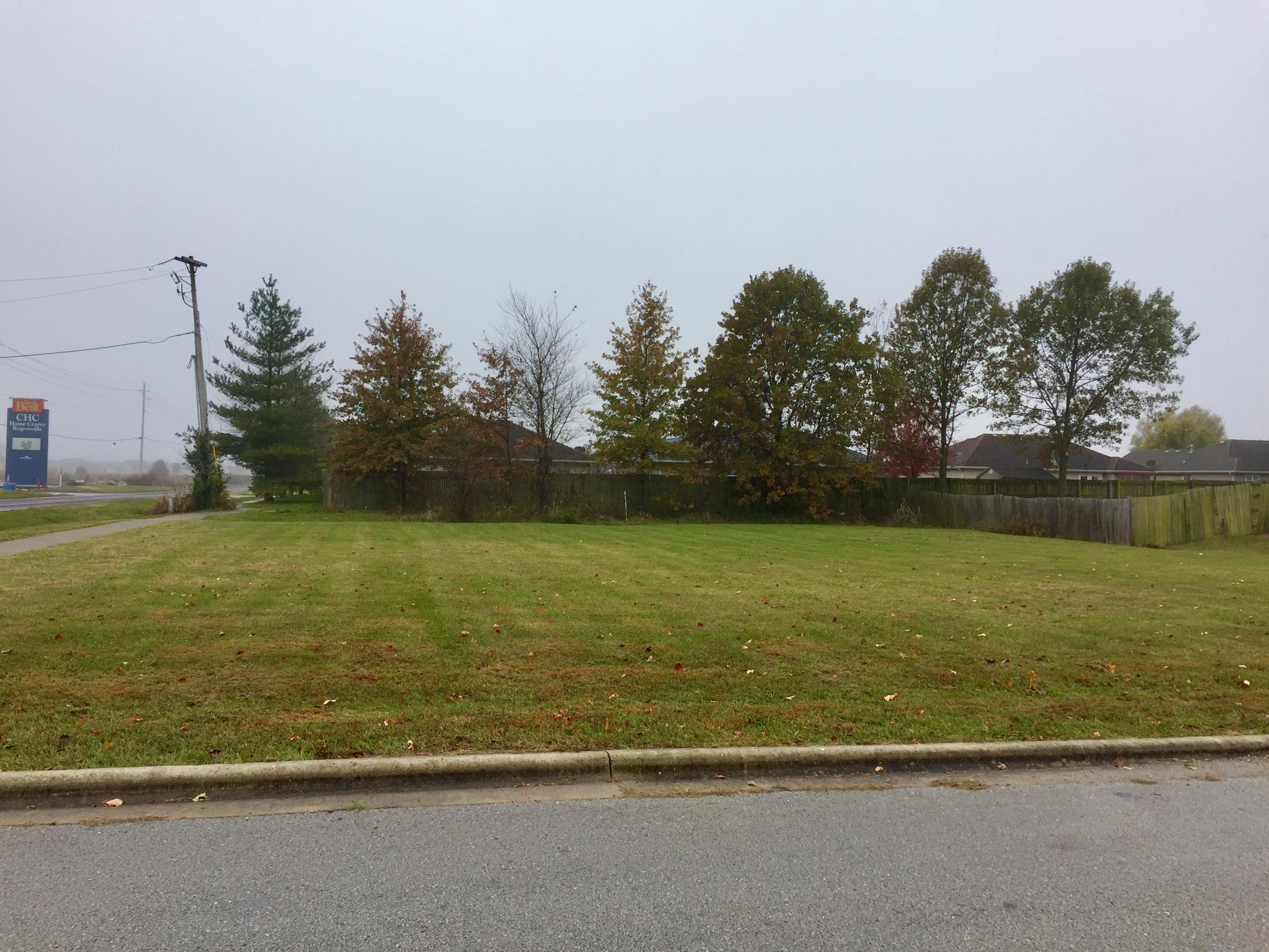 Lot 1 South Mill Street Rogersville, MO 65742