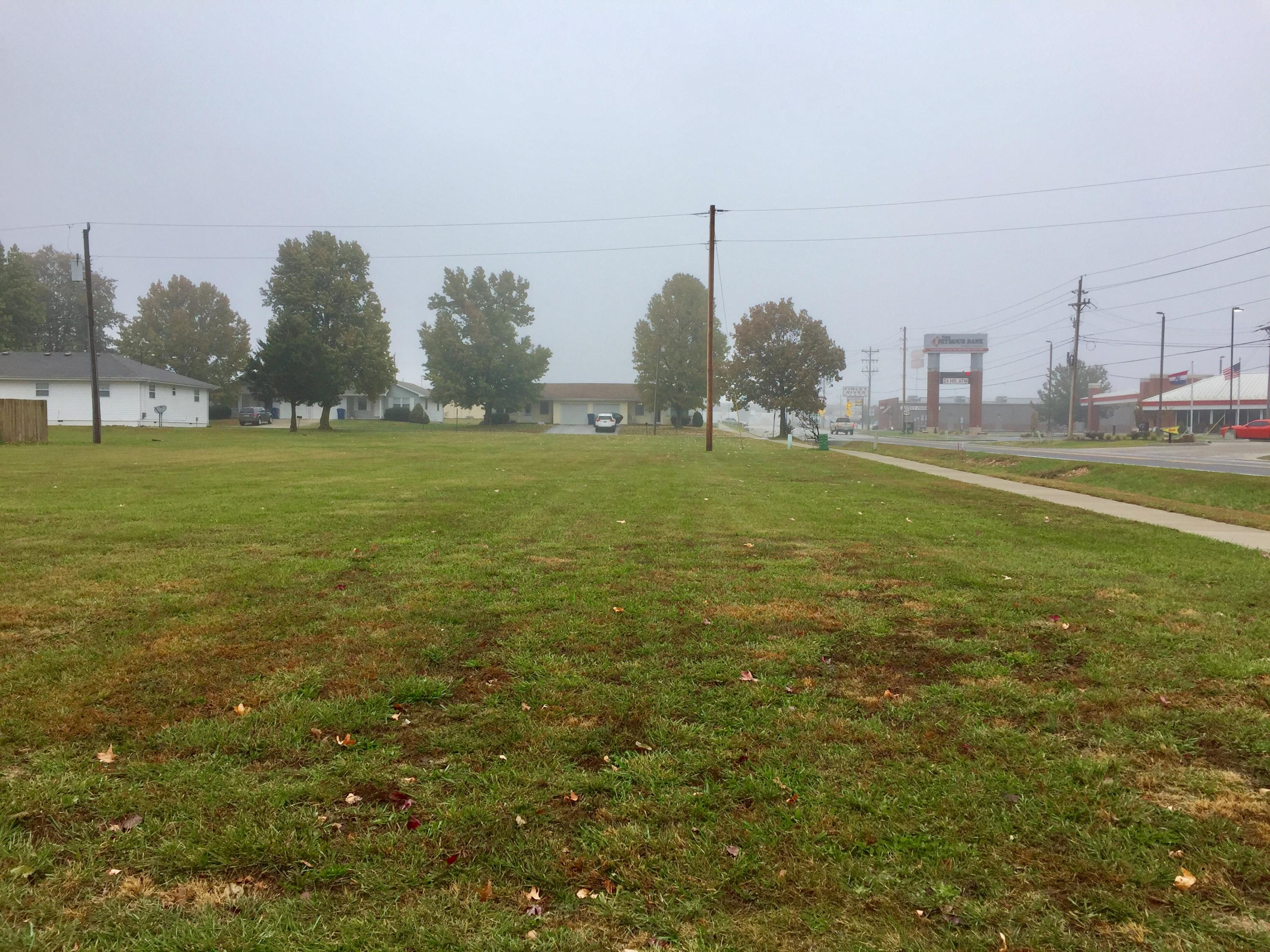 Lot 44 South Mill Street Rogersville, MO 65742