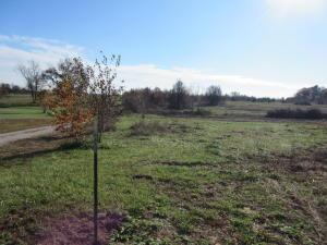 Tract #3 Dade Farm Road 186, Ash Grove, MO 65604